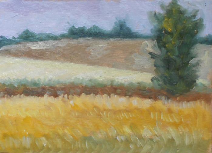 5.-sunset-on-the-fields