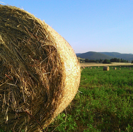 hay bale in umbria italy