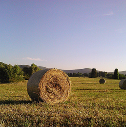 hay bales in umbria italy